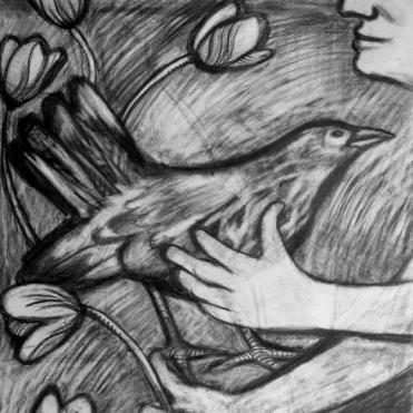 Blackbird and Tulips
